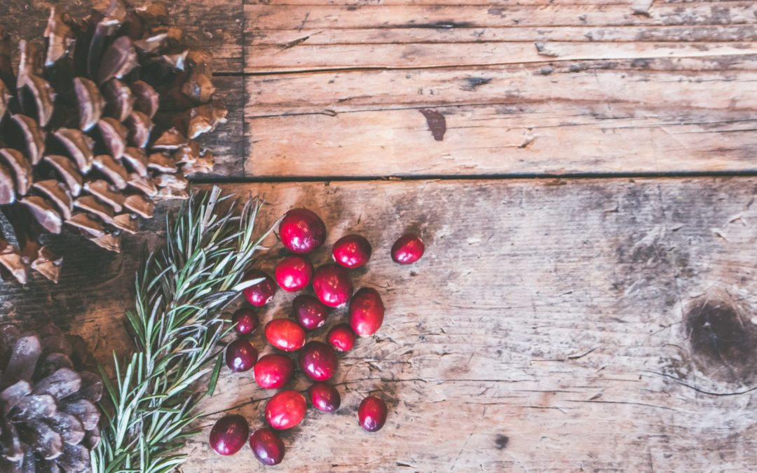 7 Ways to Give Back this Holiday Season!